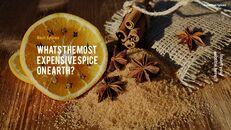 허브와 향신료의 차이점은 무엇입니까? 파워포인트 프레젠테이션 샘플_19