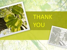 Green Leaves - Free PPT Presentations_06