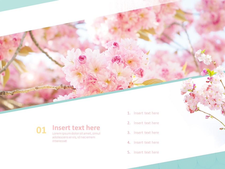Free Powerpoint Sample Pink Cherry Blossoms