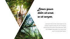 정글 배경 파워포인트_23