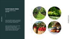 과일 농장 프레젠테이션 디자인_07