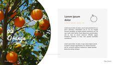과일 농장 프레젠테이션 디자인_16