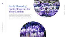 봄 꽃 비즈니스 사업 피피티_17