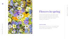 봄 꽃 편집이 쉬운 Google 슬라이드_03