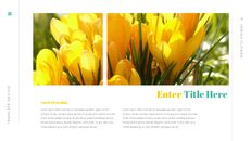 봄 꽃 편집이 쉬운 Google 슬라이드_11