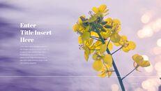 봄 꽃 편집이 쉬운 Google 슬라이드_12