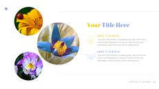 봄 꽃 편집이 쉬운 Google 슬라이드_21