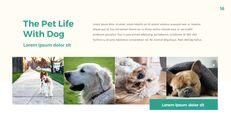 애완 동물 생활 심플한 파워포인트 템플릿 디자인_16