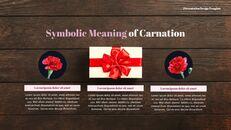 카네이션 꽃과 선물 피피티 템플릿 디자인_05