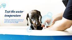 애완동물 살롱 Google 슬라이드의 파워포인트_07