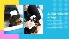 애완동물 살롱 Google 슬라이드의 파워포인트_08