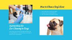 애완동물 살롱 Google 슬라이드의 파워포인트_10
