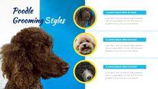 애완동물 살롱 Google 슬라이드의 파워포인트_23