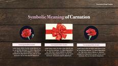 카네이션 꽃과 선물 키노트 템플릿_05
