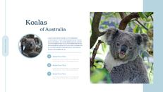 호주 시드니 여행 실행 사업계획 PPT_05