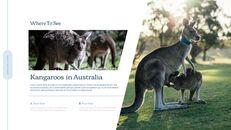 호주 시드니 여행 실행 사업계획 PPT_06