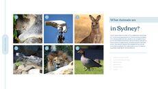 호주 시드니 여행 실행 사업계획 PPT_28