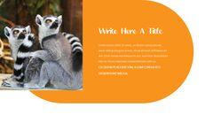 동물원 슬라이드 PPT_03