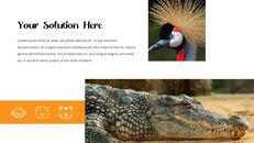동물원 슬라이드 PPT_06