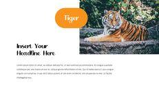 동물원 슬라이드 PPT_07