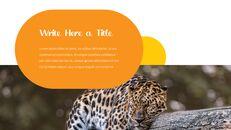 동물원 슬라이드 PPT_10