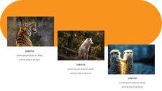동물원 슬라이드 PPT_24