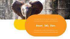 동물원 슬라이드 PPT_28