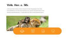 동물원 슬라이드 PPT_29
