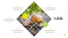 달팽이 슬라이드 PPT_25