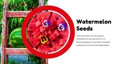 수박 Google 슬라이드 테마 & 템플릿_15