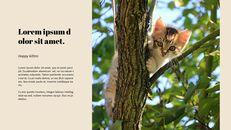 고양이 키우기 프레젠테이션_16