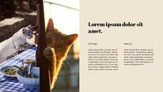 고양이 키우기 프레젠테이션_19