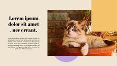 고양이 키우기 프레젠테이션_21