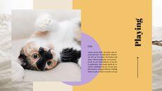고양이 키우기 프레젠테이션_25