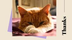고양이 키우기 프레젠테이션_40