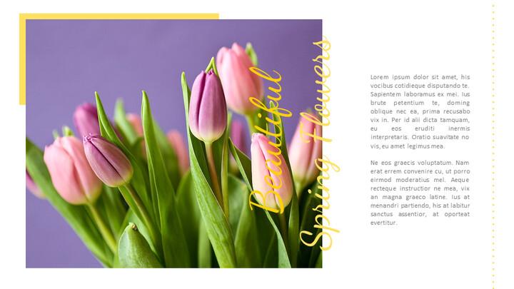 봄 꽃 구글슬라이드 템플릿_02