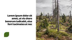 환경 보호 프레젠테이션용 PowerPoint 템플릿_03
