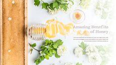 꿀의 장점 비즈니스 사업 피피티_03