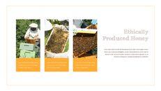 꿀의 장점 비즈니스 사업 피피티_20