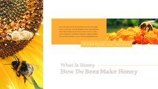 꿀의 장점 비즈니스 사업 피피티_24