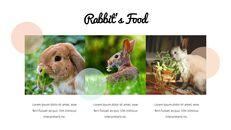 토끼 비즈니스 전략 파워포인트_16