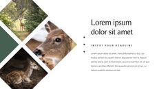 사슴 회사 프로필 템플릿 디자인_04