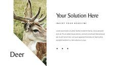 사슴 회사 프로필 템플릿 디자인_09