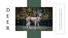 사슴 회사 프로필 템플릿 디자인_14