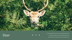 사슴 회사 프로필 템플릿 디자인_24