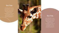 사파리 동물 프레젠테이션 슬라이드 ppt_04