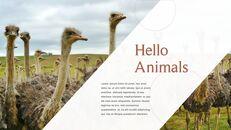 사파리 동물 프레젠테이션 슬라이드 ppt_05