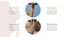 사파리 동물 프레젠테이션 슬라이드 ppt_10