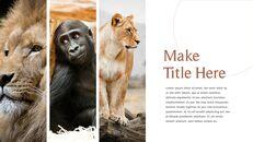 사파리 동물 프레젠테이션 슬라이드 ppt_11
