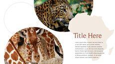사파리 동물 프레젠테이션 슬라이드 ppt_15